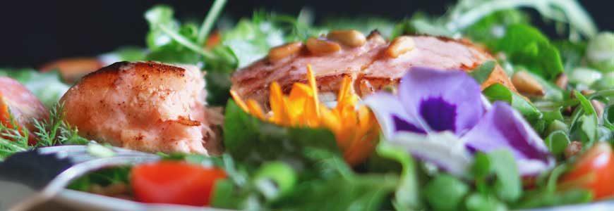 Salad Top Image 870X300